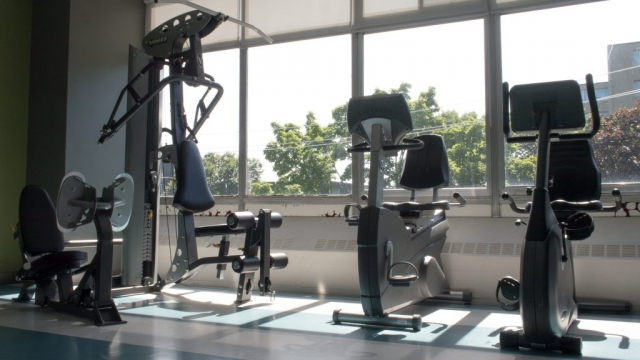 A row of equipment in the workout gym